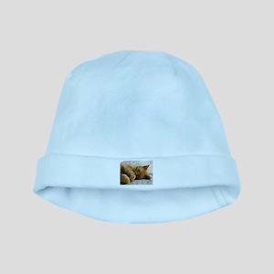 Sweet Dreams baby hat