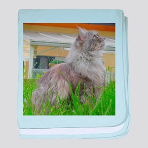 maine coon sitting 3 baby blanket