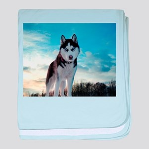 Husky Dog Outdoor baby blanket