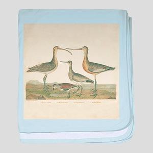 Antique Birds Coastal Marsh baby blanket