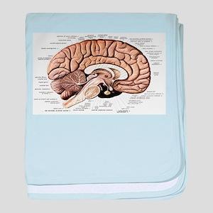 Human Brain baby blanket