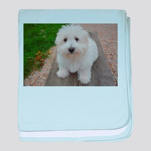 coton de tulear on bench baby blanket