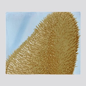 Bee antenna, SEM - Throw Blanket
