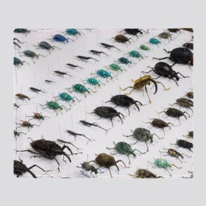 Beetle collection Throw Blanket