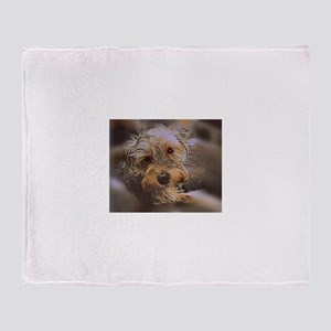 Penny the Yorkipoo Throw Blanket