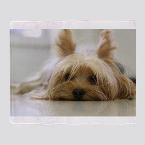 Yorkshire Terrier laying flat Throw Blanket
