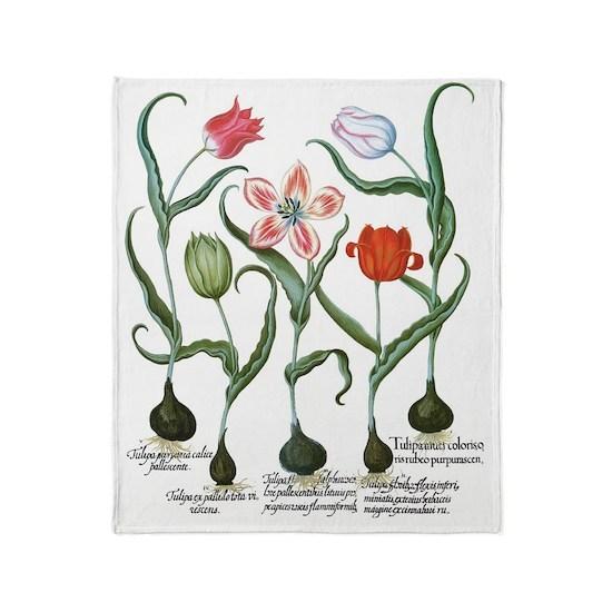 Vintage Tulips by Basilius Besler