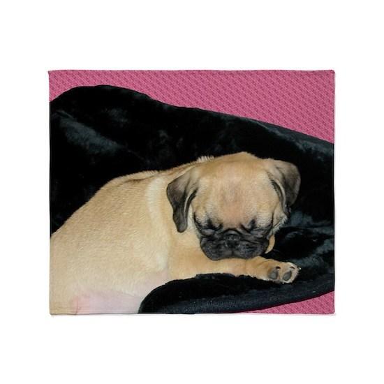 Adorable Sleeping Pug Puppy