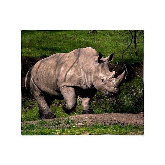 (2) Rhino on Hill