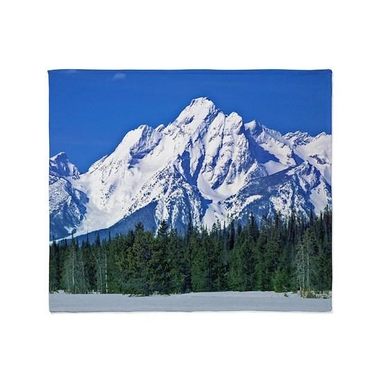 Yellowstone Snowy Mountain View
