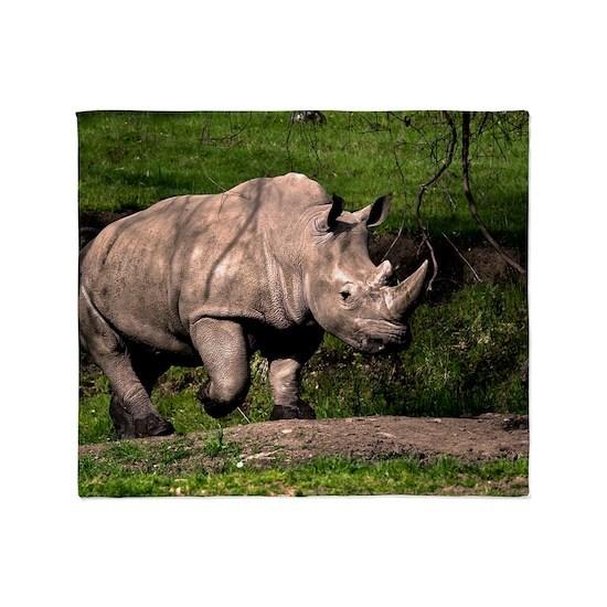 (6) Rhino on Hill