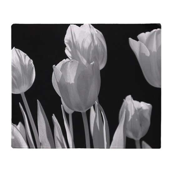 Black and White Tulips