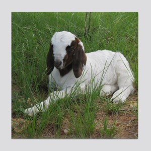 Baby Billy Goat Tile Coaster