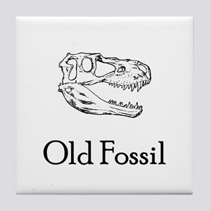 Old Fossil Tile Coaster