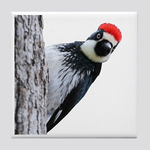 Acorn Woodpecker Bird T-Shirt Tile Coaster