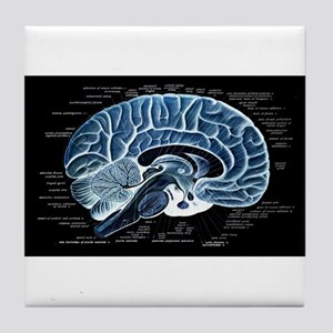 Human Brain Tile Coaster