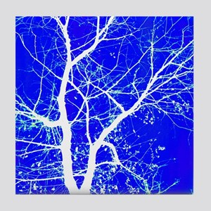 Tree with White Branches Tile Coaster