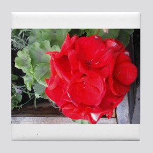 red geranium Tile Coaster
