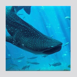 WHALE SHARK 2 Tile Coaster
