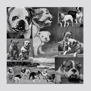 Vintage Bulldog Collage Tile Coaster
