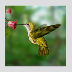 Hummingbird in Flight Bird Photo Tile Coaster