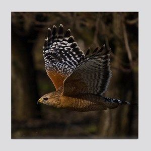 (15) Red Shouldered Hawk Flying Tile Coaster