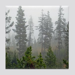 Misty forest Tile Coaster
