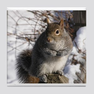 Gray squirrel Tile Coaster