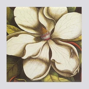 modern vintage fall magnolia flower Tile Coaster
