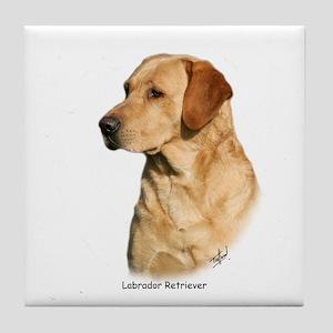 Labrador Retriever 9Y297D-038a Tile Coaster
