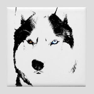 Husky Gifts Bi-Eye Husky Shirts & Gifts Tile Coast