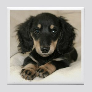 Long Haired Puppy Tile Coaster