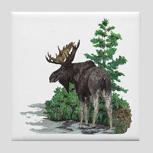 Bull moose art Tile Coaster