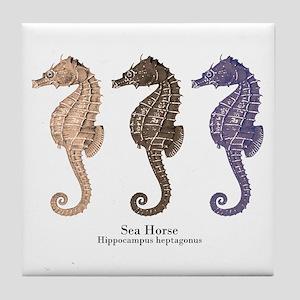 Sea Horse Vintage Art Tile Coaster