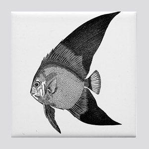 Vintage Angel Fish illustration Tile Coaster