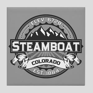 Steamboat Grey Tile Coaster