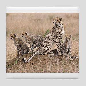 Cheetah Family Tile Coaster