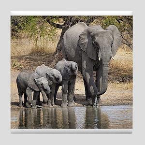 Elephant mom and babies Tile Coaster