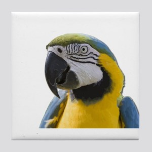 Blue and Yellow Macaw Thinking Tile Coaster