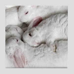 01-January-babies Tile Coaster
