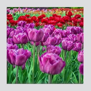 Tulip Field Tile Coaster