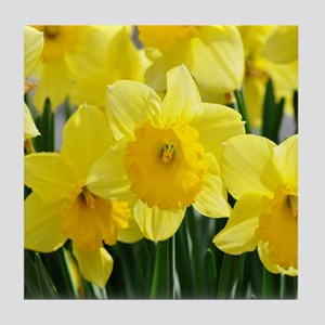 Trumpet Daffodil Tile Coaster