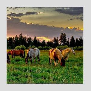 Horses Grazing Tile Coaster