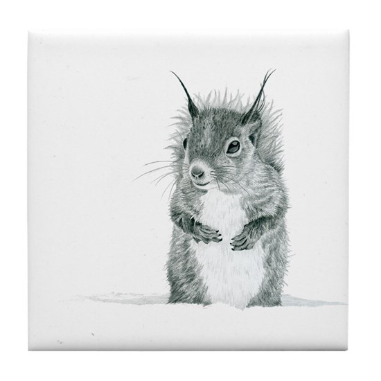 Cute Squirrel Drawing