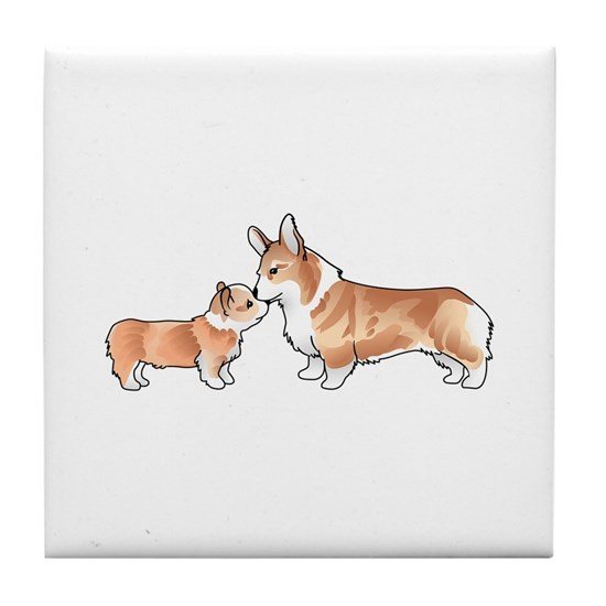 CORGI ADULT AND PUP