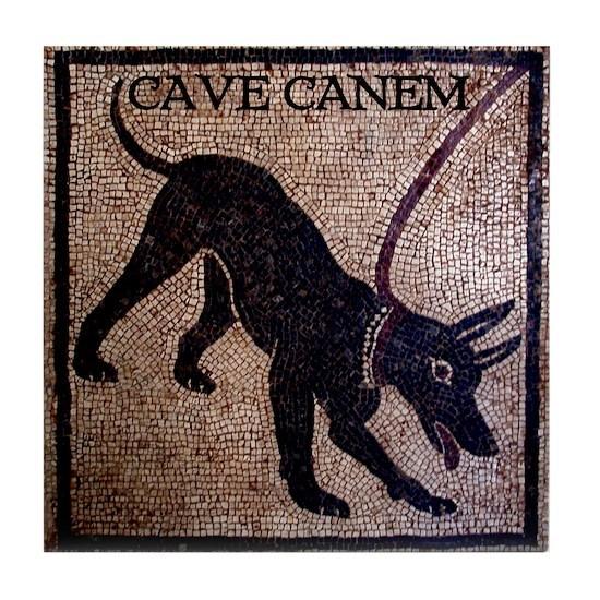 CAVE-canem-mosaic-10x10
