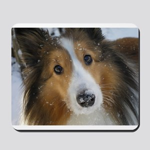 Snow Whiskers Mousepad