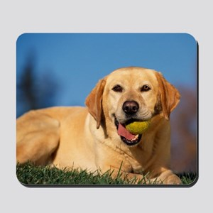 YELLOW LAB Mousepad