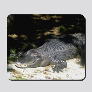 Alligator Sunbathing Mousepad