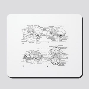 Kitties Mousepad